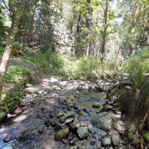 Bryne Creek Ravine Park (StreetView)