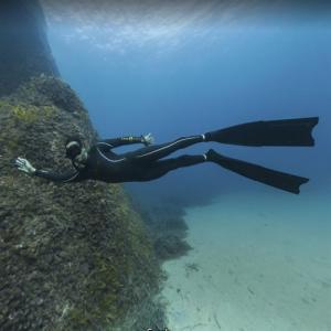 Scuba Diver off Pointe de la Vieille (StreetView)
