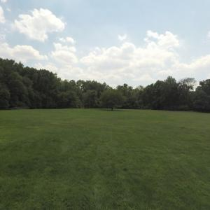 Greenbelt Park (StreetView)