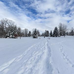 Bear Creek Park (StreetView)
