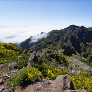 View from Pico Ruivo (StreetView)
