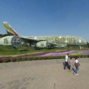 Emirates floral Airbus A380 at Dubai Miracle Garden (StreetView)
