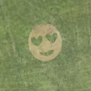 Emoji crop circle in Dundee (Google Maps)