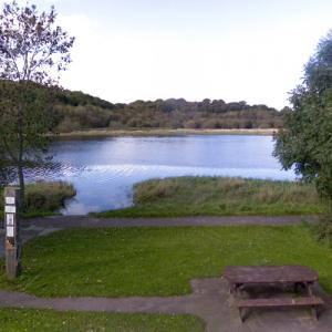 """Quoile Pondage Nature Reserve (""""Game of Thrones"""") (StreetView)"""
