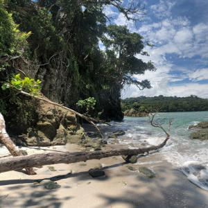Manuel Antonio National Park (StreetView)