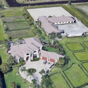 Alejandro Andrade's House (Google Maps)