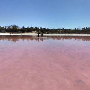 In Pink Lake (StreetView)