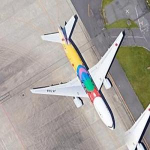 """All Nippon Airways Boeing 777 """"Tokyo 2020"""" livery at HND (Google Maps)"""