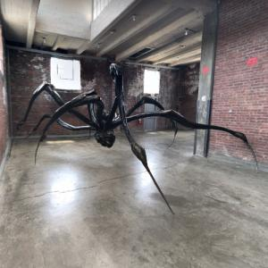 'Crouching Spider' by Louise Bourgeois (StreetView)