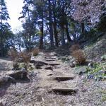 Ishigakiyama Ichiya Castle Ruins