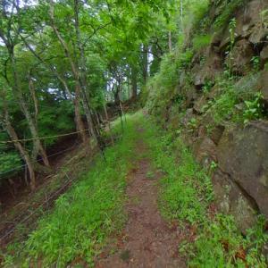 Wakasa Oniga Castle Ruins (StreetView)