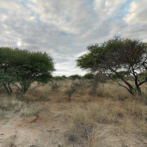N/a'an ku sê Wildlife Sanctuary (StreetView)