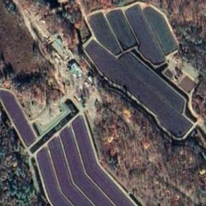 Muskoka Lakes Farm and Winery (Google Maps)