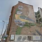 Titmouse mural