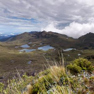 View from Mount Chirripó (highest point in Costa Rica) (StreetView)