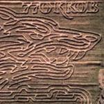770KKOB maze (Google Maps)