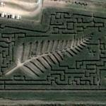 Palm maze