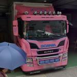 Scania P320