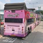 Rickshaw Sightseeing Bus