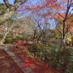 Former Nabeshima Family Villa Gardens