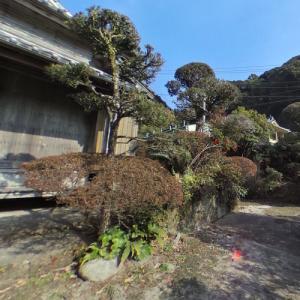 Torihama Family Gardens (StreetView)