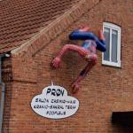 Spiderman on the house