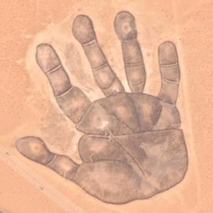 Buddha's Palm (Google Maps)
