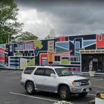 'ViBe Mural' by Lisa Ashinoff