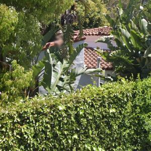 Michael Angarano's and Maya Erskine's House (StreetView)