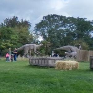 Field Station Dinosaur Park (StreetView)