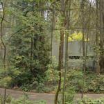 'Frey House' by Wendell Lovett