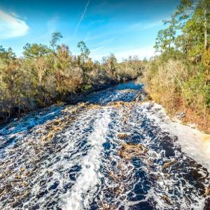 Suwannee River rapids in Florida (StreetView)