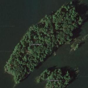 Dan Aykroyd's Loon Island (Google Maps)
