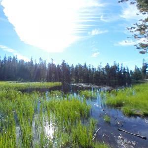 Siesta Lake (StreetView)