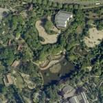 Diergaarde Blijdorp (Google Maps)