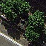 Danton statue (Google Maps)