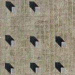 8 Poles (Google Maps)