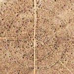 Large Concentric Circles in the desert (Google Maps)