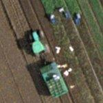 Harvesting (Google Maps)