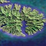 Banks Peninsula (Google Maps)