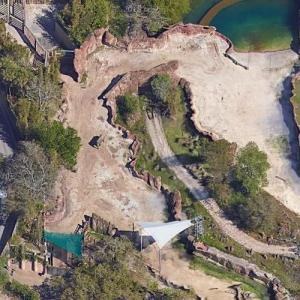 Elephants at Busch Gardens (Google Maps)