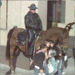 Mounted Policeman (StreetView)