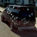 Doggie ambulance