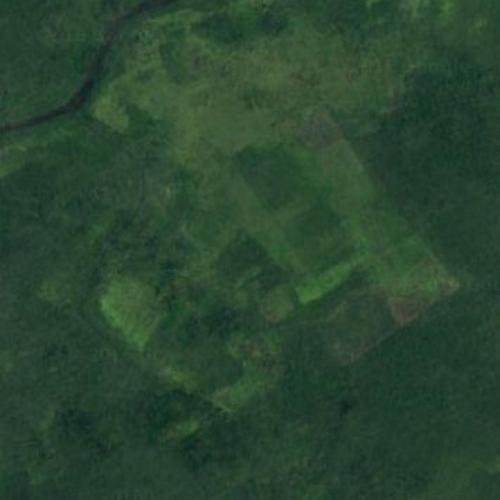 Site of Jonestown in Guyana (Google Maps)