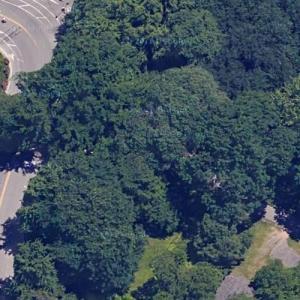 Strawberry Fields (John Lennon memorial) (Google Maps)