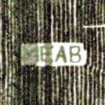 MEAB (Google Maps)
