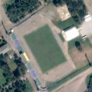 Stadion Tsentral (Google Maps)