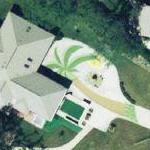 Palm Tree Driveway (Google Maps)