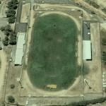 Stadio Biagio Pirina (Google Maps)