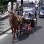 Horse-drawn carriage (StreetView)
